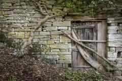 Lantlig trädörr på en gammal stenvägg fotografering för bildbyråer