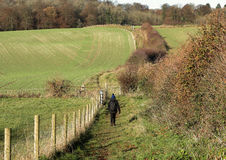 lantlig trail för ladyvandrare Royaltyfri Foto