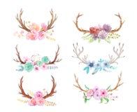 Lantlig uppsättning för vattenfärg av blommor och sidor royaltyfria bilder