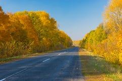 Lantlig väg i centrala Ukraina på den soliga höstliga dagen Royaltyfria Foton