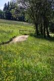 Lantlig väg i den polska Tatrasen Fotografering för Bildbyråer