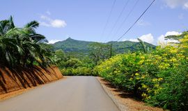 Lantlig väg i Mauritius Island Royaltyfria Foton