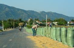 Lantlig väg i Nha Trang, Vietnam royaltyfri bild