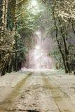 Lantlig väg i snön på natten Arkivbild