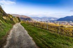 Lantlig väg i Wachau Lägre Österrike royaltyfri fotografi
