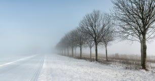 Lantlig väg med snow- och skurkrolldimma och låg synlighet royaltyfri foto