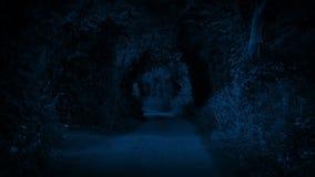 Lantlig väg sent på natten arkivfilmer