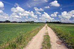 Lantlig väg till och med fält och blå himmel med moln Royaltyfri Foto