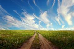 Lantlig väg till och med gröna fält Arkivfoton