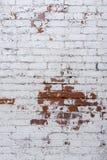 Lantlig väggbakgrund för vit tegelsten Fotografering för Bildbyråer