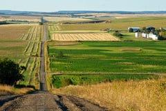 Lantlig väg och lantgårdar i nedgång Royaltyfri Foto