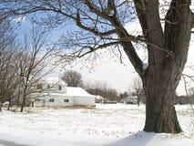 lantlig vinter Arkivbilder