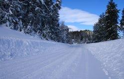 lantlig vinter för 5 vägar Arkivfoto
