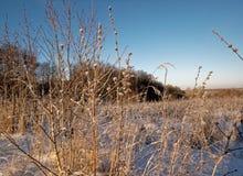 lantlig vinter för liggande Arkivfoton