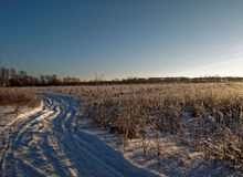 lantlig vinter för liggande Royaltyfri Foto
