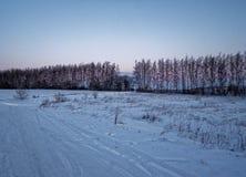 lantlig vinter för liggande Royaltyfria Foton