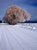 lantlig vinter för plats 3 Arkivbild