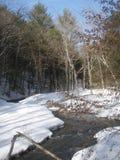 lantlig vinter för USA vermont Royaltyfri Fotografi