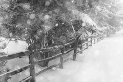 Lantlig vinterplats med staketet Royaltyfri Foto