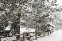 Lantlig vinterplats med staketet Royaltyfri Fotografi