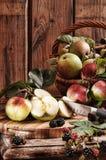 lantliga äpplen fotografering för bildbyråer