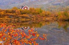 Lantliga bergkabiner på bergen, Norge Royaltyfria Foton