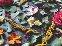 Lantliga dekorativa blommor och sidor Royaltyfri Fotografi