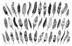 Lantliga dekorativa fjädrar Hand dragen tappningvektordesign vektor illustrationer