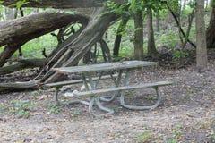 Lantliga Forest Picnic Table Arkivfoto