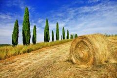 Lantliga landskap av härliga Tuscany, Italien Fotografering för Bildbyråer
