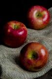 Lantliga röda äpplen arkivbild