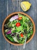 Lantliga salladgräsplaner arkivfoto