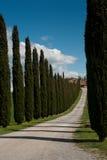 Lantliga Tuscany Arkivfoto