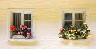 lantliga två fönster Royaltyfri Bild