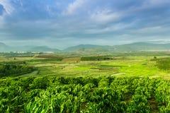 Lantliga Vietnam på det Don Duong landskapet Royaltyfria Foton