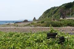 Lantligt avfall på kusten Royaltyfria Bilder