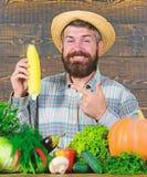 Lantligt byinv?nareutseende f?r bonde V?x organiska sk?rdar F?r bondeh?ll f?r man tr?gladlynt sk?ggig majskolv eller majs arkivfoto
