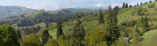 Lantligt Carpathian landskap Rumänien royaltyfri foto