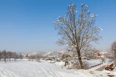 Lantligt fält som täckas med snö Arkivfoton