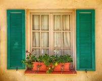 Lantligt fönster med den gamla gräsplanslutare och blomkrukan Royaltyfria Foton