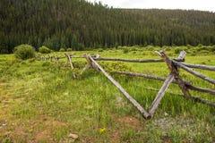 Lantligt gammalt staket och vildblommor i bergen av Colorado Arkivfoto