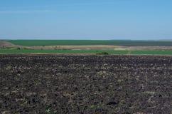 Lantligt höstlandskapfält, avlägsen horisont Royaltyfria Foton
