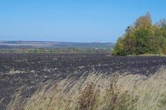 Lantligt höstlandskapfält, avlägsen horisont Arkivbild