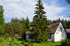 Lantligt hus med gröna träd i Polen arkivbild