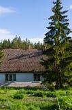 Lantligt hus med gröna träd i Polen royaltyfria bilder