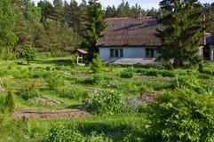 Lantligt hus med gröna träd i Polen royaltyfri foto