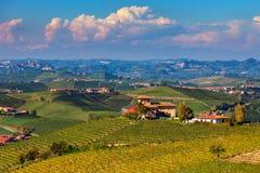 Lantligt hus på kullen bland vingårdar Royaltyfria Foton