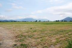 Lantligt jordbruks- dallandskap Royaltyfri Foto