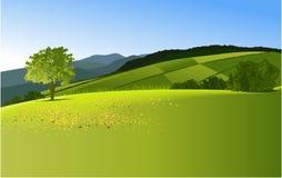 Lantligt landskap Arkivbilder