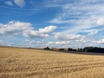 Lantligt landskap Arkivfoto